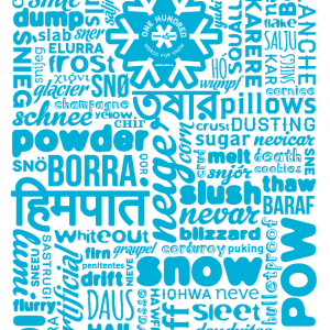 100-words-for-snow-poster