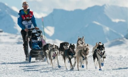 La Grande Odyssee Husky Sled Race Les Gets